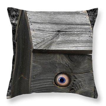 Birds Eye View Throw Pillow by Kristie  Bonnewell