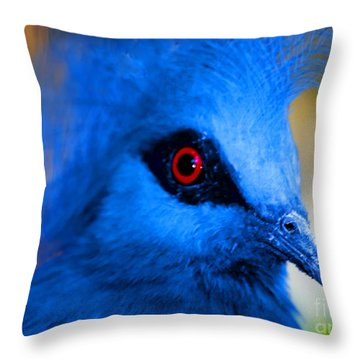 Bird's Eye View Throw Pillow by Tap On Photo
