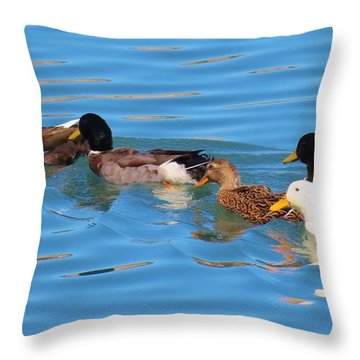 Birds Not Of A Feather Throw Pillow by Feva  Fotos