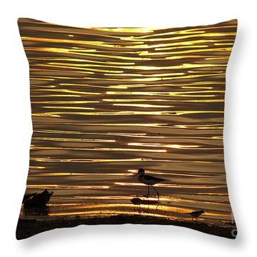Throw Pillow featuring the photograph Birds Walking In Gold Water Waves by John  Kolenberg