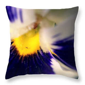 Birthplace Throw Pillow by Chriss Pagani