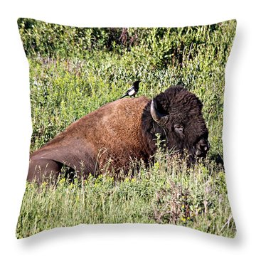 Bison And Bird Throw Pillow