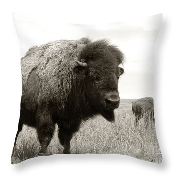 Bison And Calf Throw Pillow by Olivier Le Queinec