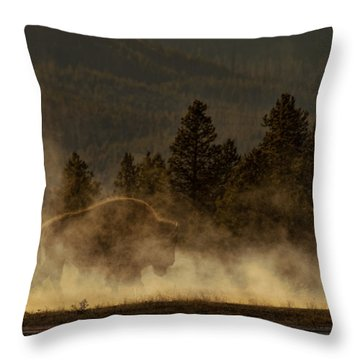 Bison In The Mist Throw Pillow