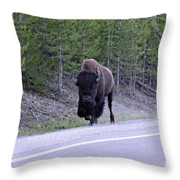 Bison On Road Throw Pillow