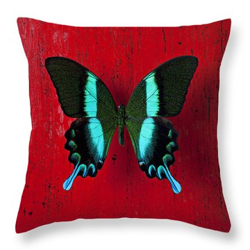 Black And Blue Butterfly  Throw Pillow by Garry Gay