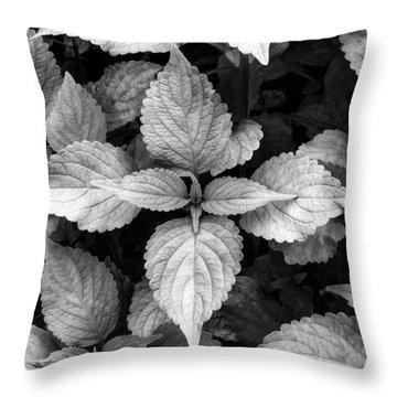 Black And White Coleus Throw Pillow
