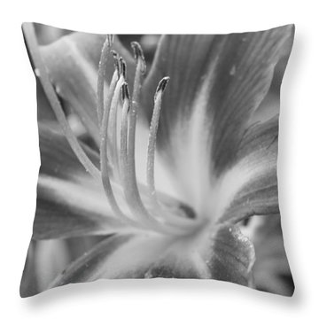 Black And White Daylily Throw Pillow by Bruce Bley