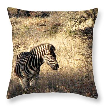 Throw Pillow featuring the photograph Black And White by William Fields
