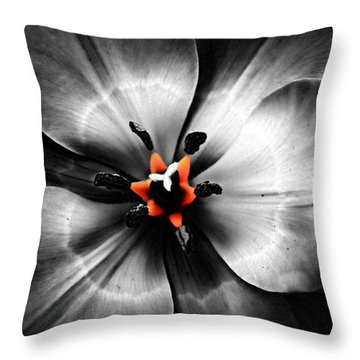 Black And White With A Glow Of Color Throw Pillow by Nick Kloepping
