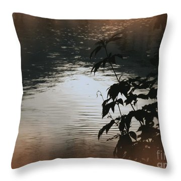 Black Bamboo Throw Pillow by Angela Wright