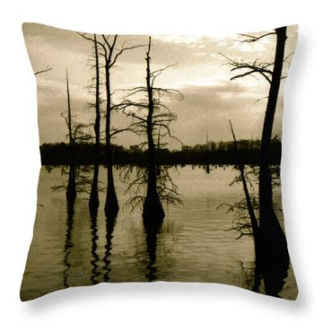 Black Bayou 8 Throw Pillow