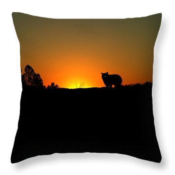 Black Bear Sunset Throw Pillow
