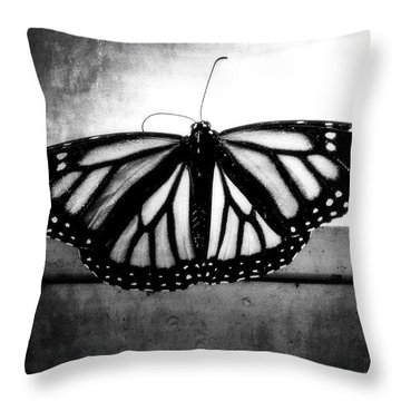 Throw Pillow featuring the photograph Black Butterfly by Julia Wilcox