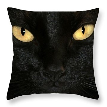Black Cat Halloween Card Throw Pillow