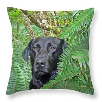 Black Dog In The Ferns Throw Pillow