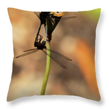 Black Dragonfly Love Throw Pillow by Sabrina L Ryan