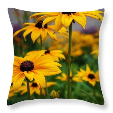Black Eyed Susan Throw Pillow by Bruce Bley