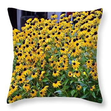 Black Eyed Susan Flowers  Throw Pillow by Susan Leggett