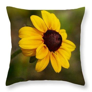 Black Eyed Susan Throw Pillow by Teresa Zieba