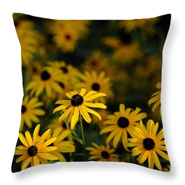 Black-eyed Susans Throw Pillow