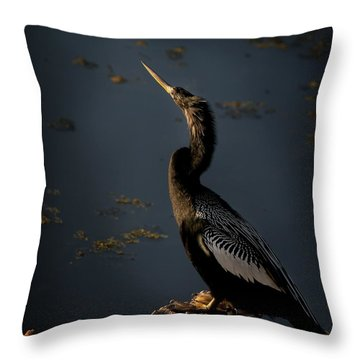 Throw Pillow featuring the photograph Black Light by Steven Sparks