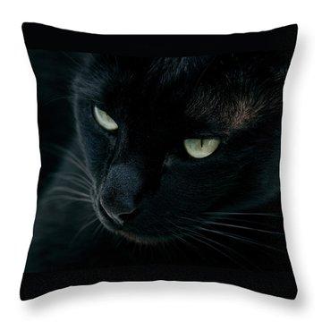 Black Panther Throw Pillow by Laura Melis
