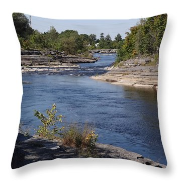 Black River 2 Throw Pillow by Mary McInnis