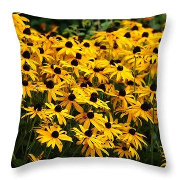 Blackeyed Susan Throw Pillow by Joe Faherty