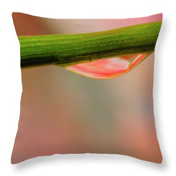 Blade Drop Throw Pillow by Arthur Fix