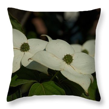 Throw Pillow featuring the photograph Blanket by Joseph Yarbrough