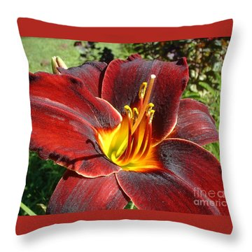 Throw Pillow featuring the photograph Bleeding Beauty by Mark Robbins