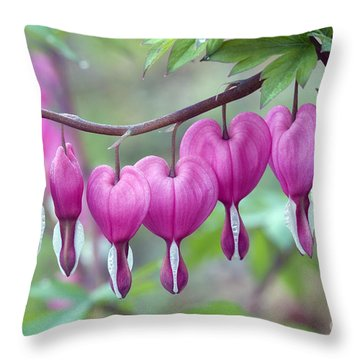 Bleeding Heart Throw Pillow by Gail Jankus and Photo Researchers