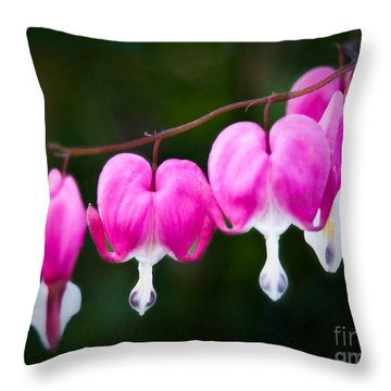 Throw Pillow featuring the photograph Bleeding Hearts 001 by Larry Carr