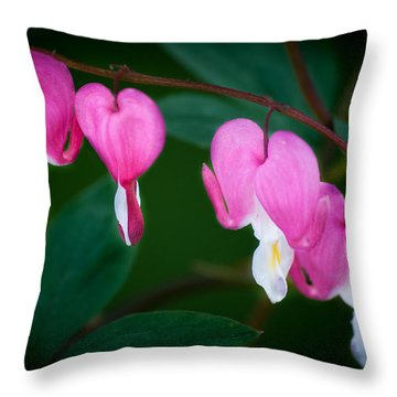 Throw Pillow featuring the photograph Bleeding Hearts 002 by Larry Carr
