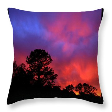 Throw Pillow featuring the photograph Blessings From The Sun by Susanne Still