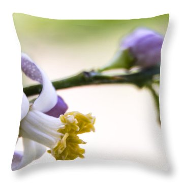 Throw Pillow featuring the photograph Bloom by Marta Cavazos-Hernandez