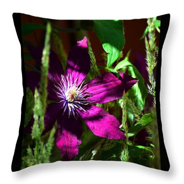 Throw Pillow featuring the photograph Blooming Clematis by Susanne Still