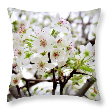 Throw Pillow featuring the photograph Blooming Ornamental Tree by Kay Novy