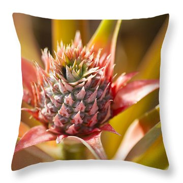 Blooming Pineapple II Throw Pillow by Ron Dahlquist