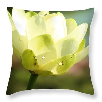 Blooming Water Lily Throw Pillow by Bruce Bley