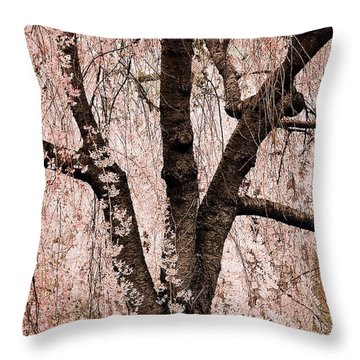 Blossom Rain Throw Pillow