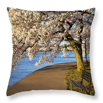 Blossoming Cherry Trees Throw Pillow by Brian Jannsen