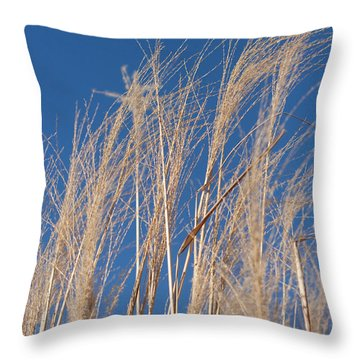 Throw Pillow featuring the photograph Blowing In The Wind by Barbara McMahon