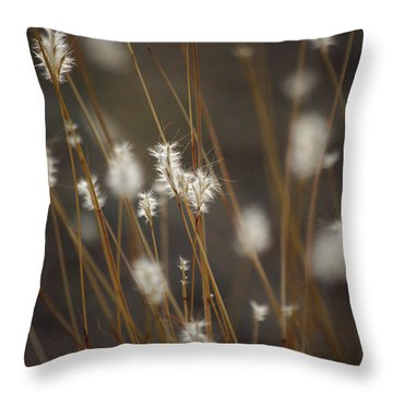 Throw Pillow featuring the photograph Blowing In The Wind by Vicki Pelham
