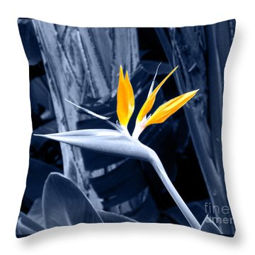 Blue Bird Of Paradise Throw Pillow by Rebecca Margraf