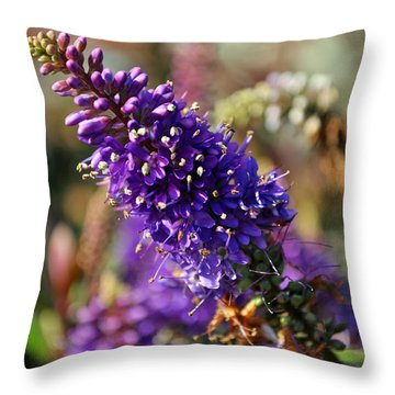 Throw Pillow featuring the photograph Blue Brush Bloom by Tikvah's Hope