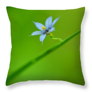 Throw Pillow featuring the photograph Blue-eyed Grass by JD Grimes