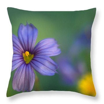 Blue Eyed Grass Throw Pillow by Kathy Yates