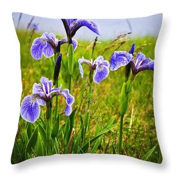 Blue Flag Iris Flowers Throw Pillow by Elena Elisseeva